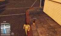 《看门狗2》超简单养狗方法攻略