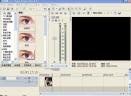 SONY VegasV8.0 汉化破解版