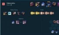 lol云顶之弈10.13六源计划VN阵容玩法攻略