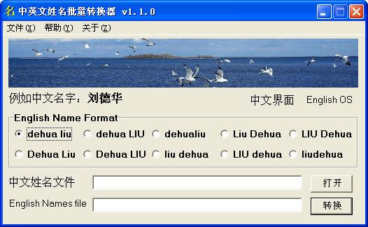 中英文姓名批量转换器V1.1.0 简体中文绿色免费版
