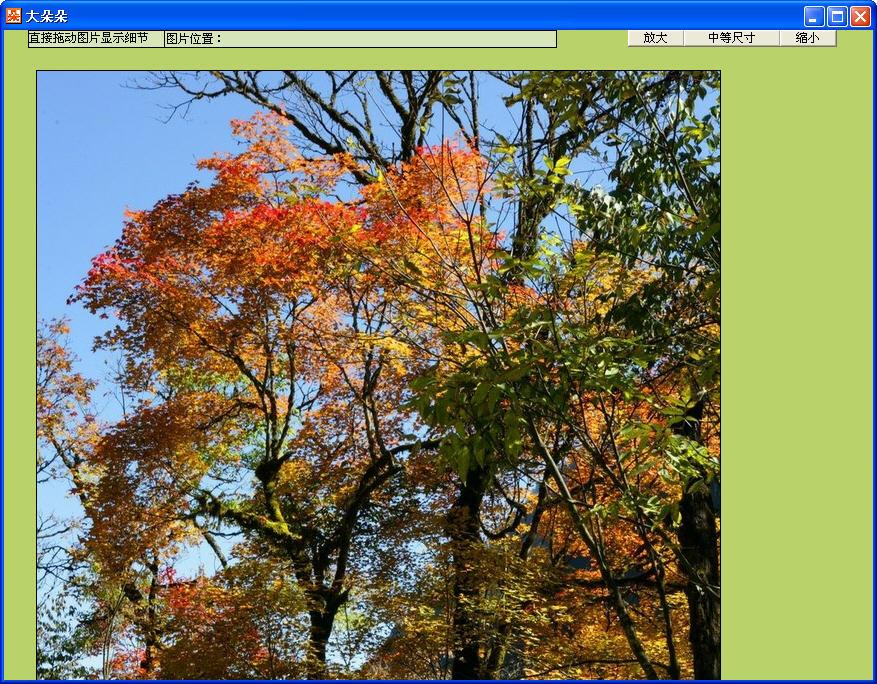 朵朵多媒体相册V3.2 官方绿色版