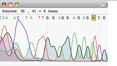 SnapGene Viewer(DNA图谱分析)V2.2.0 绿色版