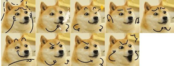 关于狗的表情_
