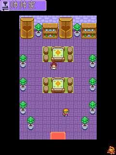 宠物王国2V1.0 安卓版