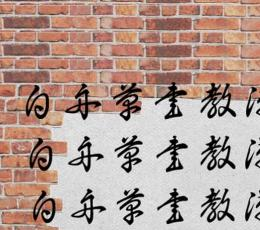 白舟草书字体