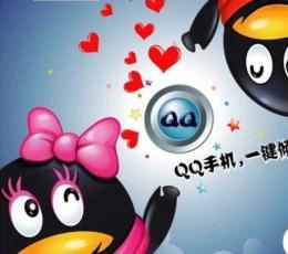 手机QQV1.5(aPad) 官方安装版下载_手机QQ
