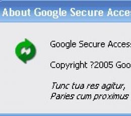 Google Secure Access(自动隐IP,不怕封IP) 汉化版绿色V1.0Beta