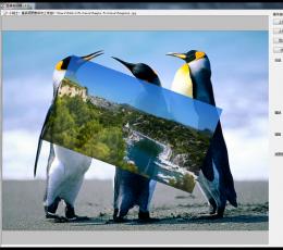 自由人图像合成器 V3.0.2 官方版
