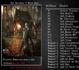 巫师3:狂猎修改器+23 V1.03 绿色版