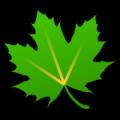 绿色守护破解版 V2.9.5 安卓版