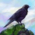 千山飞鸟(Gathering Sky) V1.0 安卓版