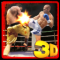 最佳拳击战士(Best Boxing Fighter) V1.3 安卓版