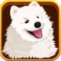 宠物主义 V1.3 安卓版