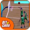 3D篮球比赛安卓版