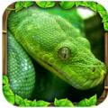 蟒蛇模拟器 Vv1.1 安卓版