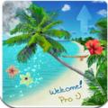 Beach Live Wallpaper Pro(漂亮海滩) V2.5.0 安卓版