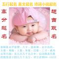 名震天下宝宝起名软件(取名专业版) V1.2.2.8 官方版