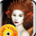 天下奇谈-央广之声有声读物系列 V1.2