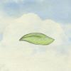 风子(Miss Wind) V1.1 安卓版