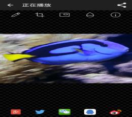 表情GIF制作软件哪个好_手机v表情GIF手机泡面搞笑图片图图片