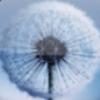三星Galaxy动态壁纸 V1.6.0 安卓版