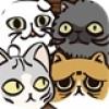 业务繁忙的丑猫轩_业务繁忙的丑猫轩安卓版V1.03安卓版下载