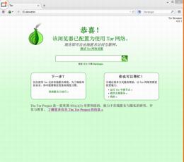 洋葱头浏览器_tor browser中文版下载