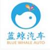 蓝鲸汽车苹果版