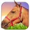 骑马3D V1.5 安卓版