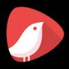 头牌网红直播平台 V1.5.4 安卓版