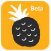 网易菠萝 V1.0.1 安卓版
