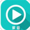 紫葡云播 V2.5 安卓版