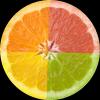 柚子直播 V1.0 安卓版