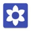 小花计算器 V1.1 安卓版