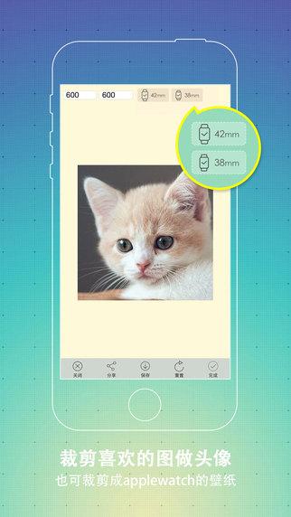 斑马高清壁纸V3.0 苹果版