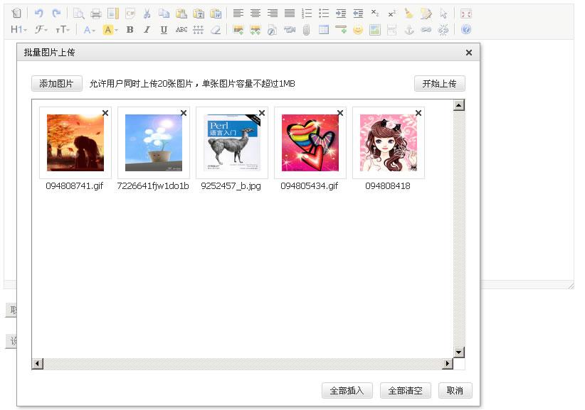 DFM2HTML(html编辑器)V8.1 绿色英文免费版