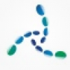 u深度u盘启动盘制作工具 V5.0.16.1123 UEFI版