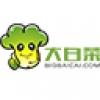 大白菜u盘装系统工具 V8.0.16.1123 装机版