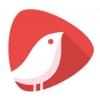 头牌网红直播平台安卓版