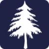 单词树 V1.0.2 安卓版