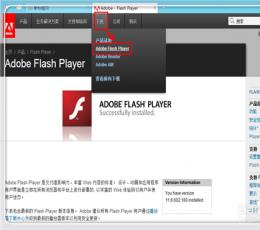 Adobe Flash PlayerV23.0.0.195 官方最新版