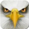 终极鸟模拟器 V1.0 电脑版