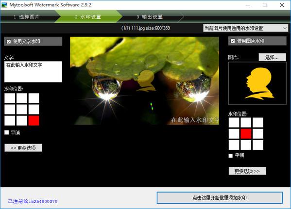 批量水印大师V3.9.3 绿色中文版