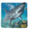 愤怒的大白鲨复仇3D破解版安卓版