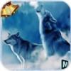北极狼群3D破解版 V1.1 安卓版