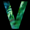 Flux for MacMac