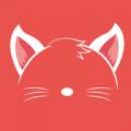 猫耳陪玩 V1.04 安卓版
