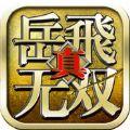 真岳飞无双 V1.0.0 苹果版