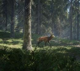猎人野性的呼唤中文版下载,猎人野性的呼唤游戏中文汉化体验版V1.0
