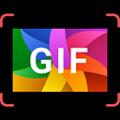 GIF Maker Movavi Mac版Mac